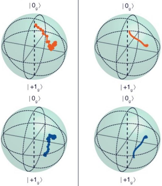 Quantum optics with single spins